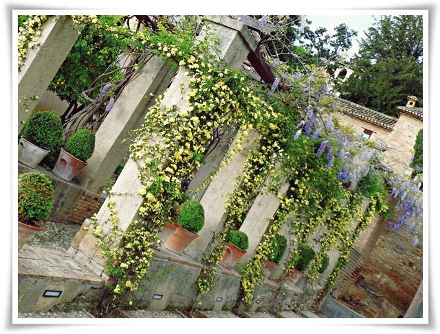 gardens-elhamra-01